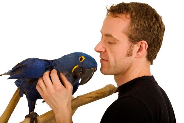 Daniel with Jack, his Hyacinth Macaw
