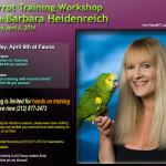 Barbara Heidenreich Parrot Workshop